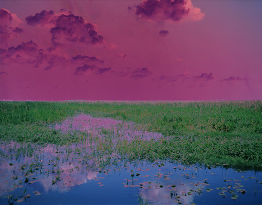 Catherine Yass Sleep (Swamp) 2009
